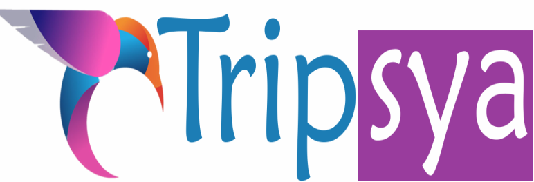 Tripsya Your Perfect Travel Partner